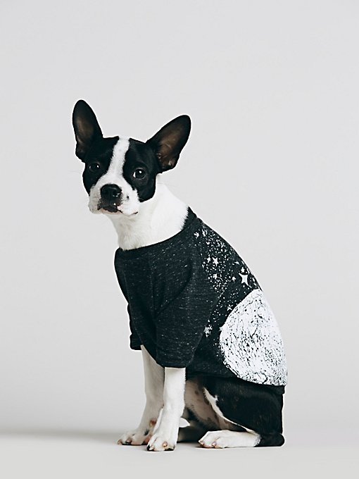 Moon and Star Print Doggie Tee
