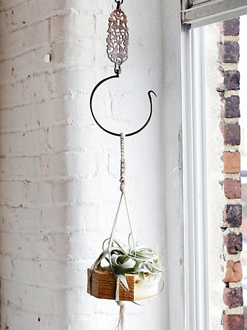 Fancy Hook Bronze