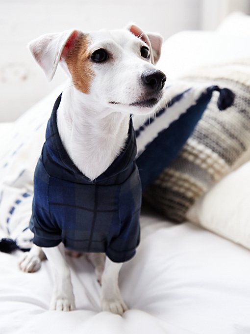 Brookfield Plaid Dog Hoodie